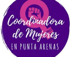 Coordinadora de Mujeres en Punta Arenas emite comunicado respecto del violento ataque ocurrido en Porvenir contra dos hombres