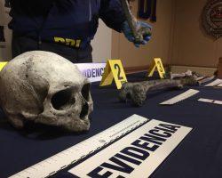 Investigan restos óseos encontrados en punta Yartou, comuna de Timaukel, provincia de Tierra del Fuego