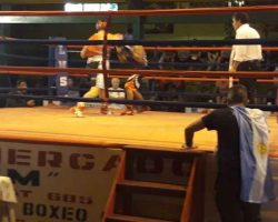 3 Campeones y un vicecampeòn en campeonato sudamericano de boxeo vivido en Chonchi