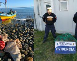 Autoridad marítima decomisa centolla en Porvenir